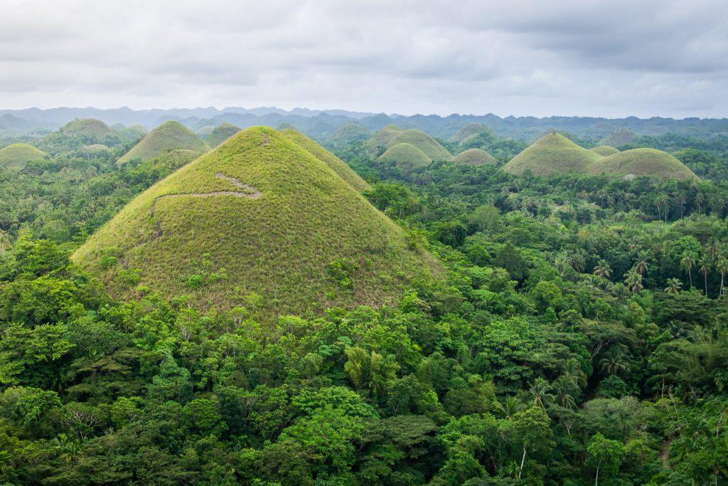 Czekoladowe Wzgórza - Bohol