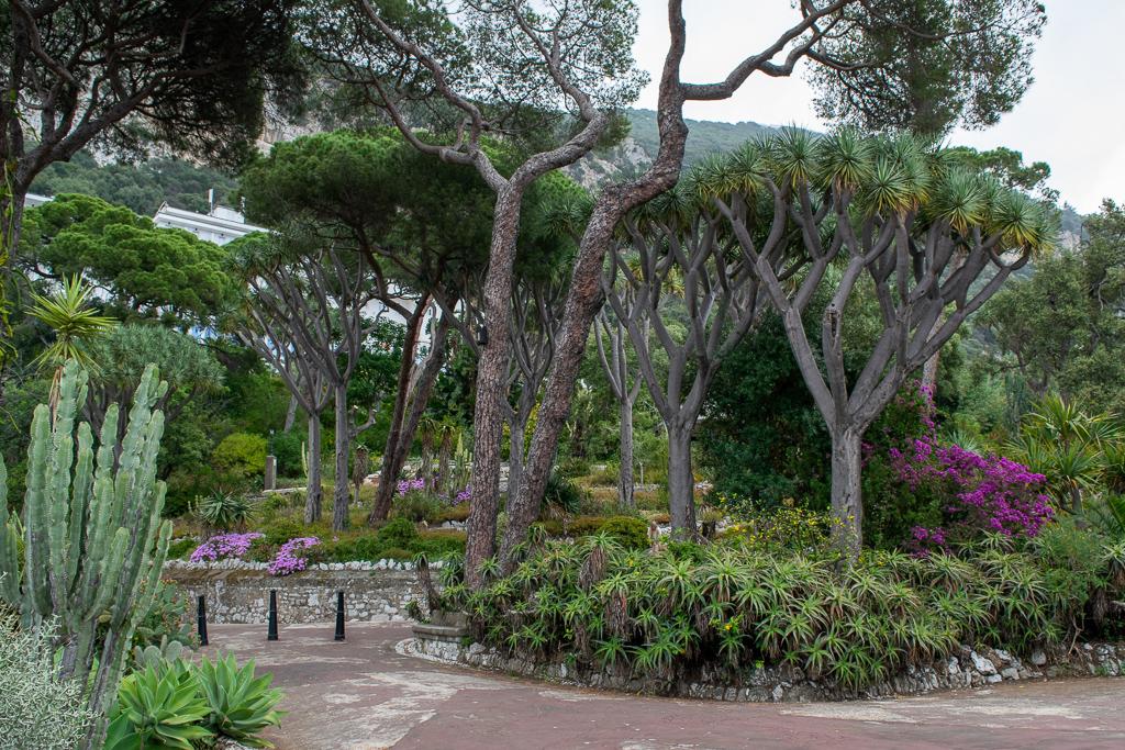 Botanic gardens in gibraltar