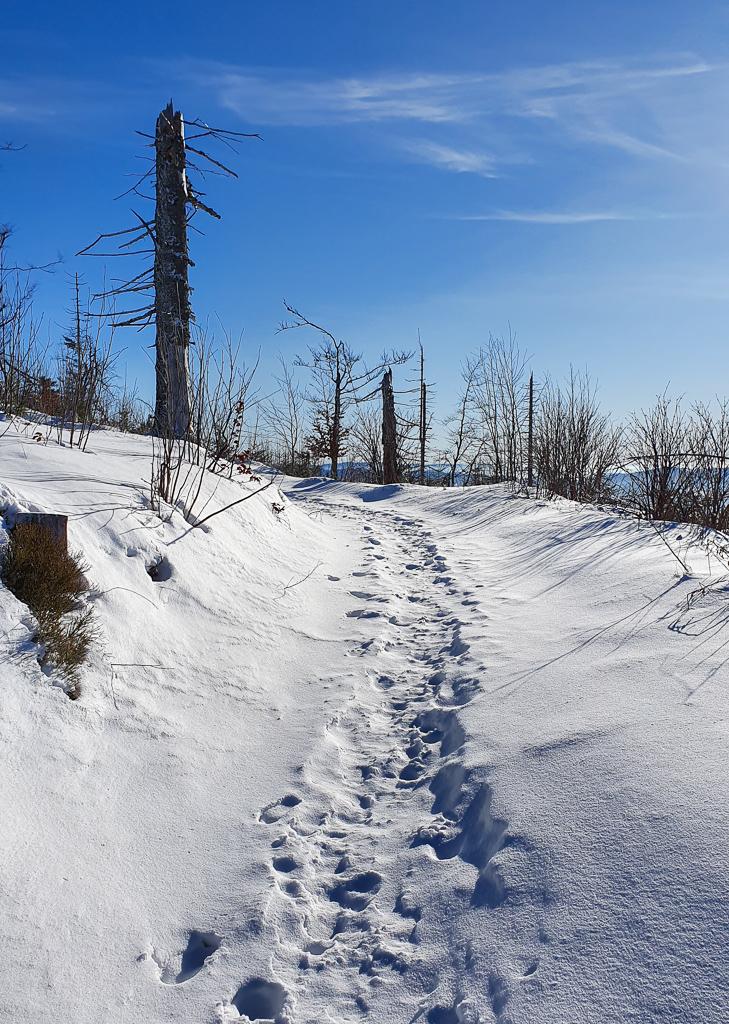 Lubań zimą szlak czerwony